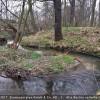 Den Abschluss des Seminars in Grimma bildete eine Besichtigung eines naturnahen Referenzgewässerabschnitts am Mutzschener Wasser.