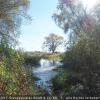 16 Elbseitenarm Blickpunkt 4 – Blick vom Elberadweg entgegen der Fließrichtung