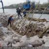 Die Ufersicherung erfolgte technisch-biologisch mit begrünter Steinschüttung.